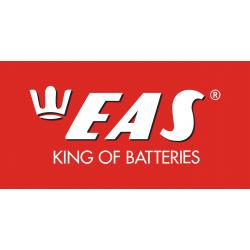 EAS (11)
